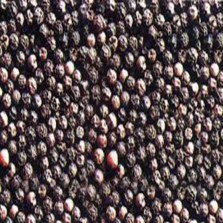 Black Pepper (Kaalee Mirch) - 1 Kg
