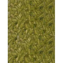 Cardamom (Elaichi) - Export Quality - 100 gm