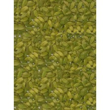 Cardamom (Elaichi) - Export Quality - 8 mm